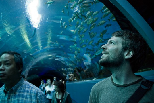 Eli in awe at the Atlantic Aquarium.