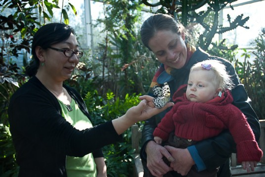 Hanna, Erin, Annabel, and a beautiful butterfly at the Museum of Life and Science.